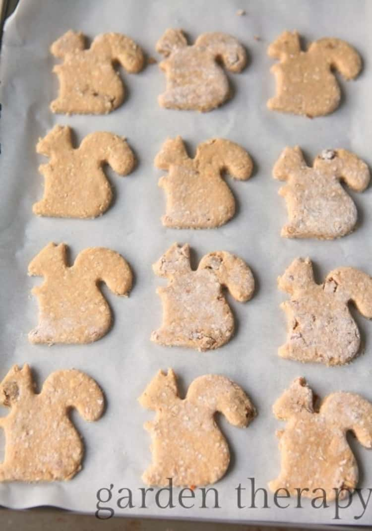 Squirrel shaped cookies