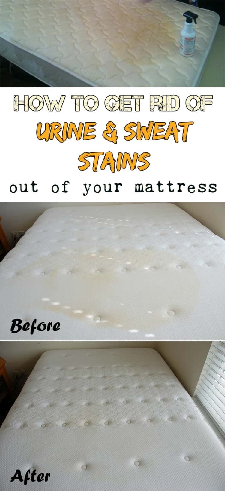 stain removal - before & after photo collage of HOW TO GET RID OF URINE & SWEAT STAINS out of your mattress