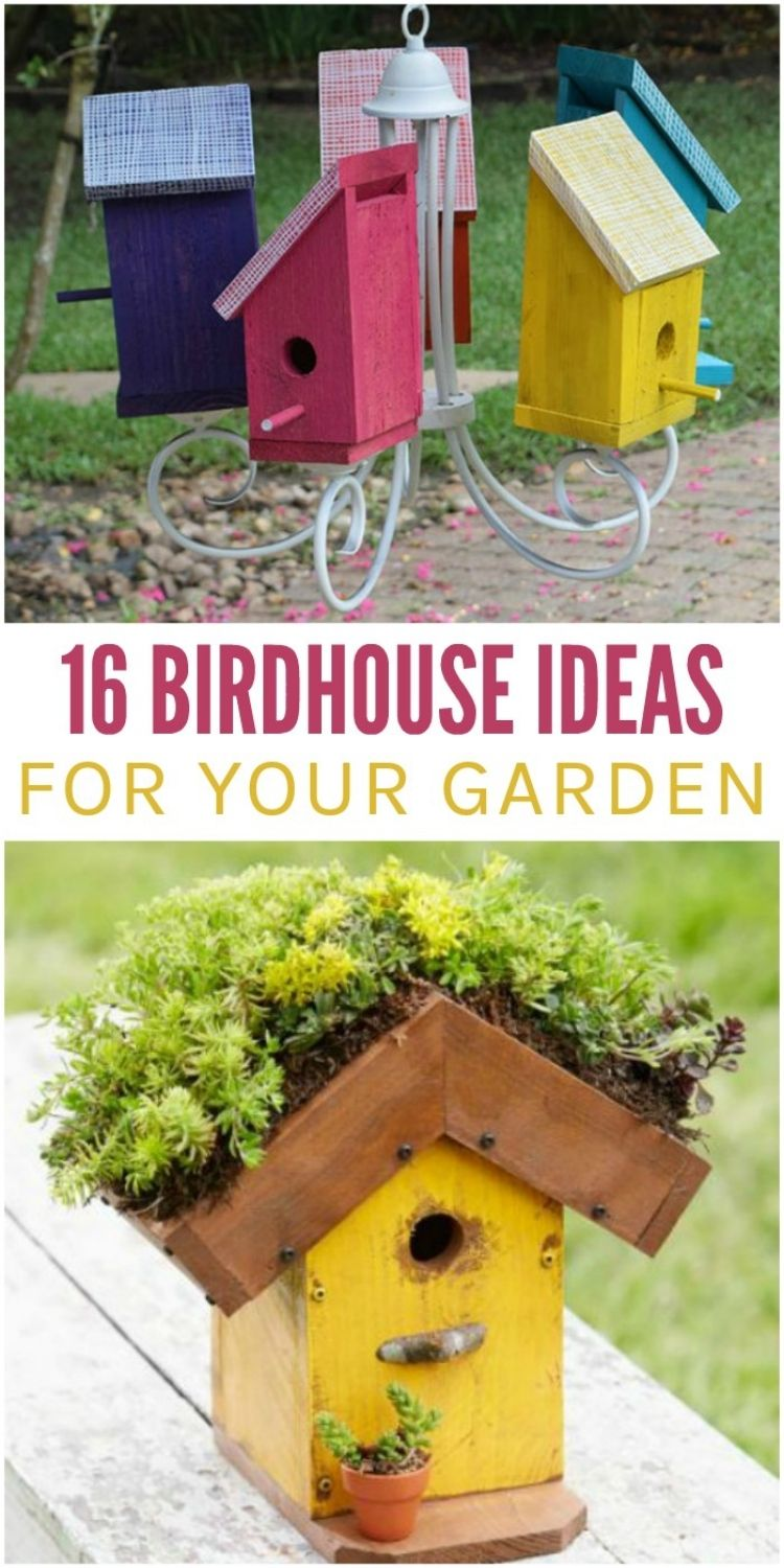 Bird house chandelier and living roofed birdhouse
