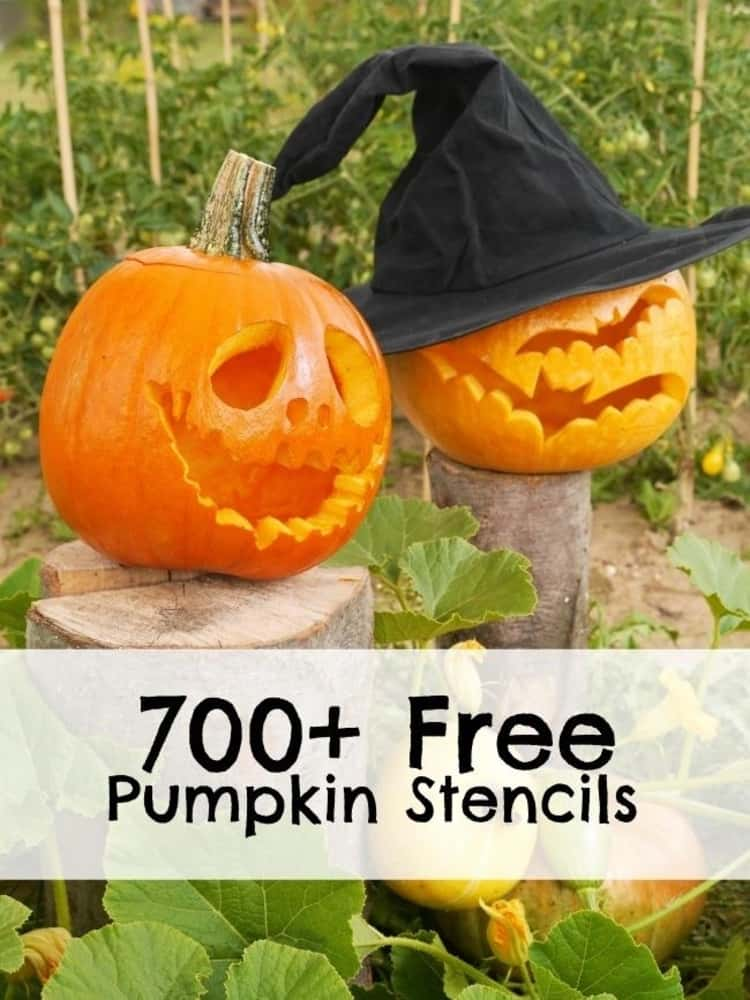 2 carved out pumpkins set out in the garden with flyer for 700+ Free pumpkin stencils
