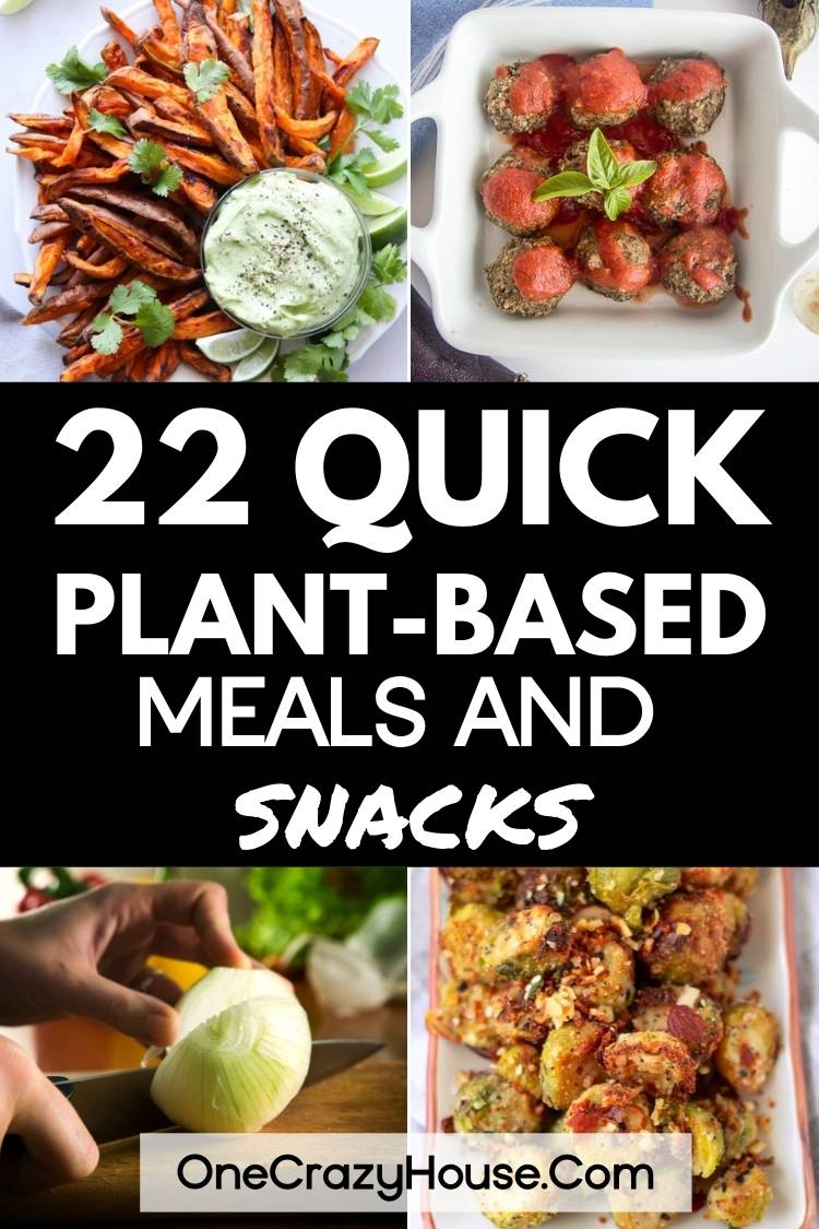 quick plant based meals and snacks
