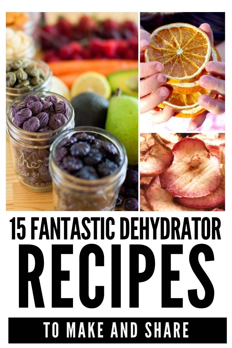 easy food dehydrator recipes you'll want to make